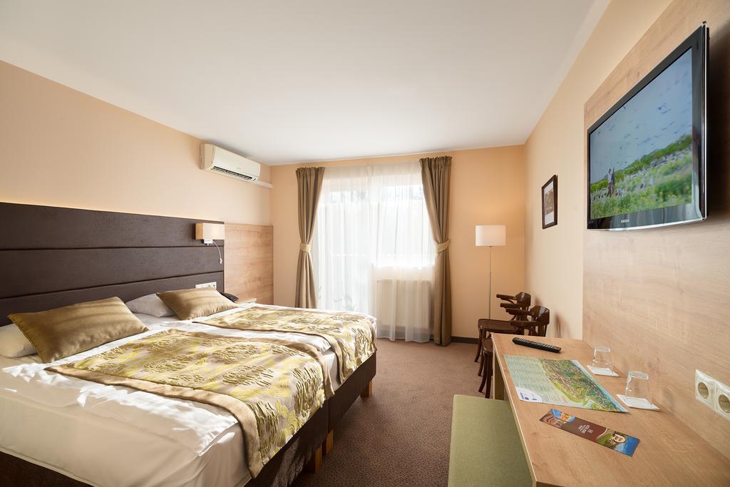 Image #2 - Hotel Honti - Visegrád