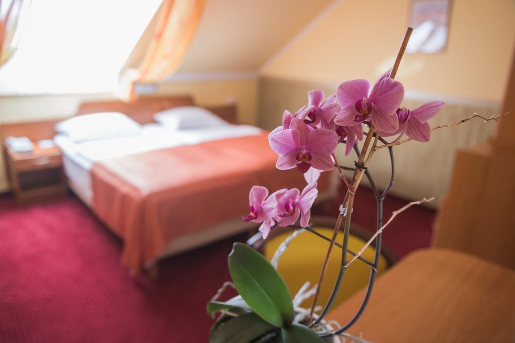 Image #9 - Hotel KORONA Eger - Eger