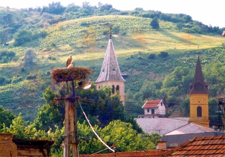 Image #14 - Hotel Millennium Tokaj - Tokaj